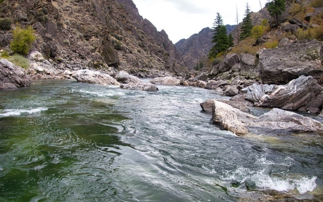 Why It's Called the Salmon River