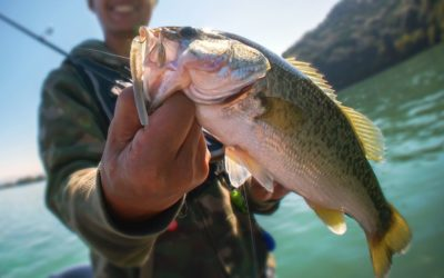 The Best Bait To Use While Fishing in Hells Canyon