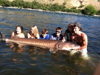 Idaho Sport Fishing